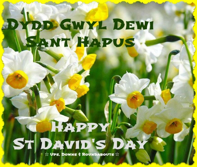 Image result for happy st. david's day in welsh