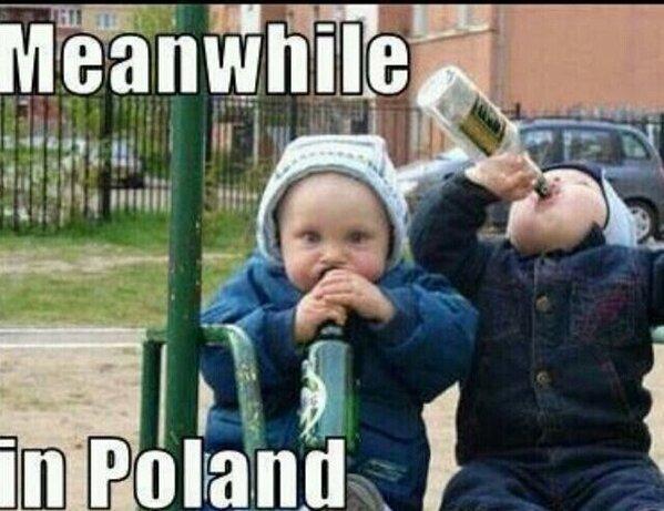 Im Half Polish Half Irish Life Similar Worlds